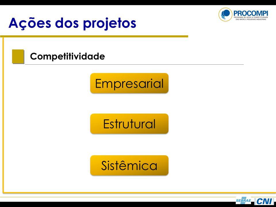 Ações dos projetos Competitividade Estrutural Empresarial Sistêmica
