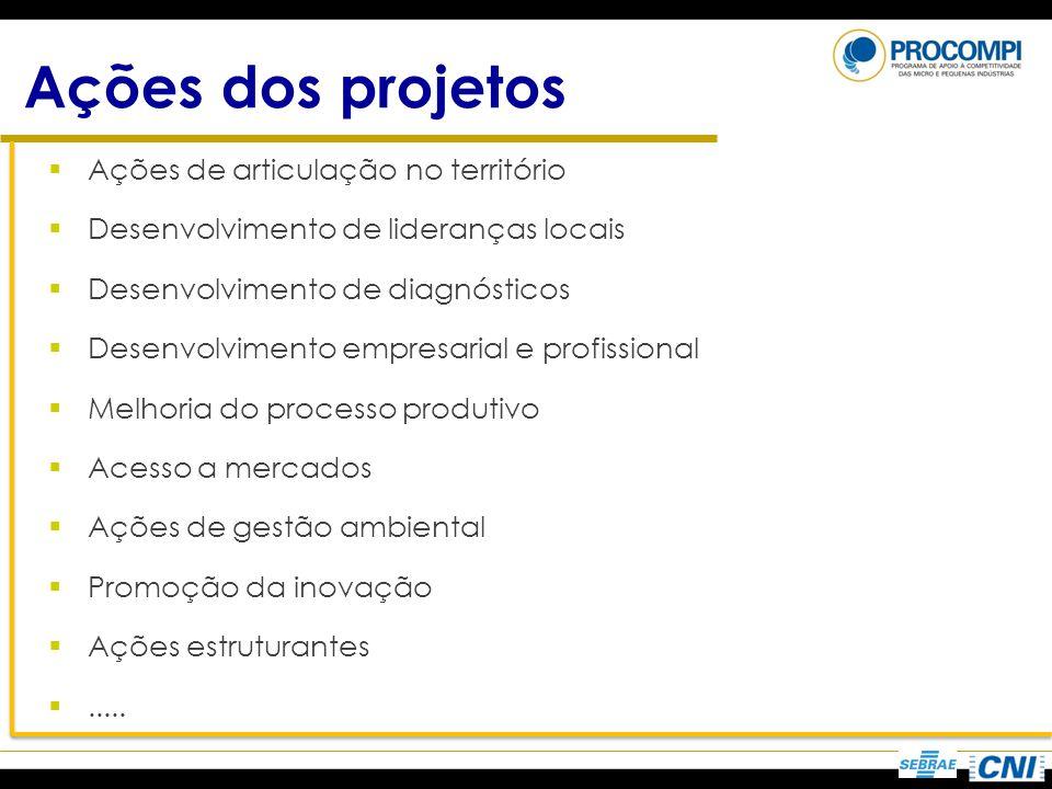 Ações dos projetos Ações de articulação no território Desenvolvimento de lideranças locais Desenvolvimento de diagnósticos Desenvolvimento empresarial