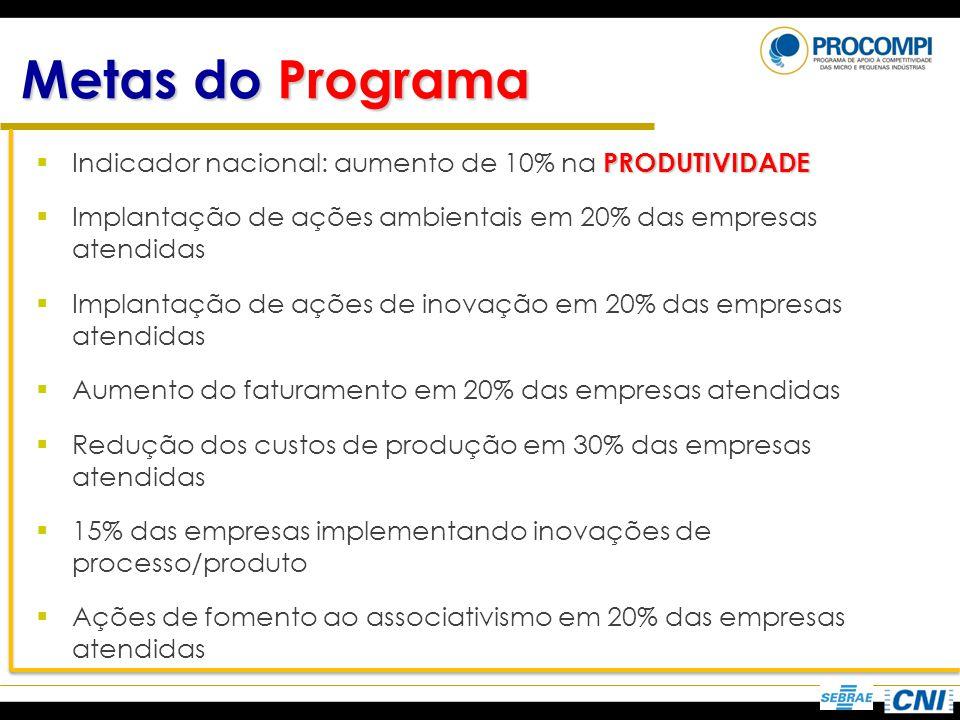 Metas do Programa PRODUTIVIDADE Indicador nacional: aumento de 10% na PRODUTIVIDADE Implantação de ações ambientais em 20% das empresas atendidas Impl