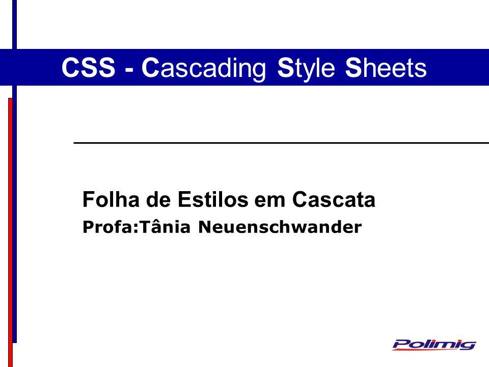 CSS - Cascading Style Sheets Folha de Estilos em Cascata Profa:Tânia Neuenschwander
