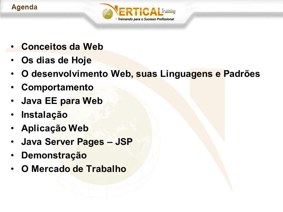 Agenda Conceitos da Web Os dias de Hoje O desenvolvimento Web, suas Linguagens e Padrões Comportamento Java EE para Web Instalação Aplicação Web Java Server Pages – JSP Demonstração O Mercado de Trabalho
