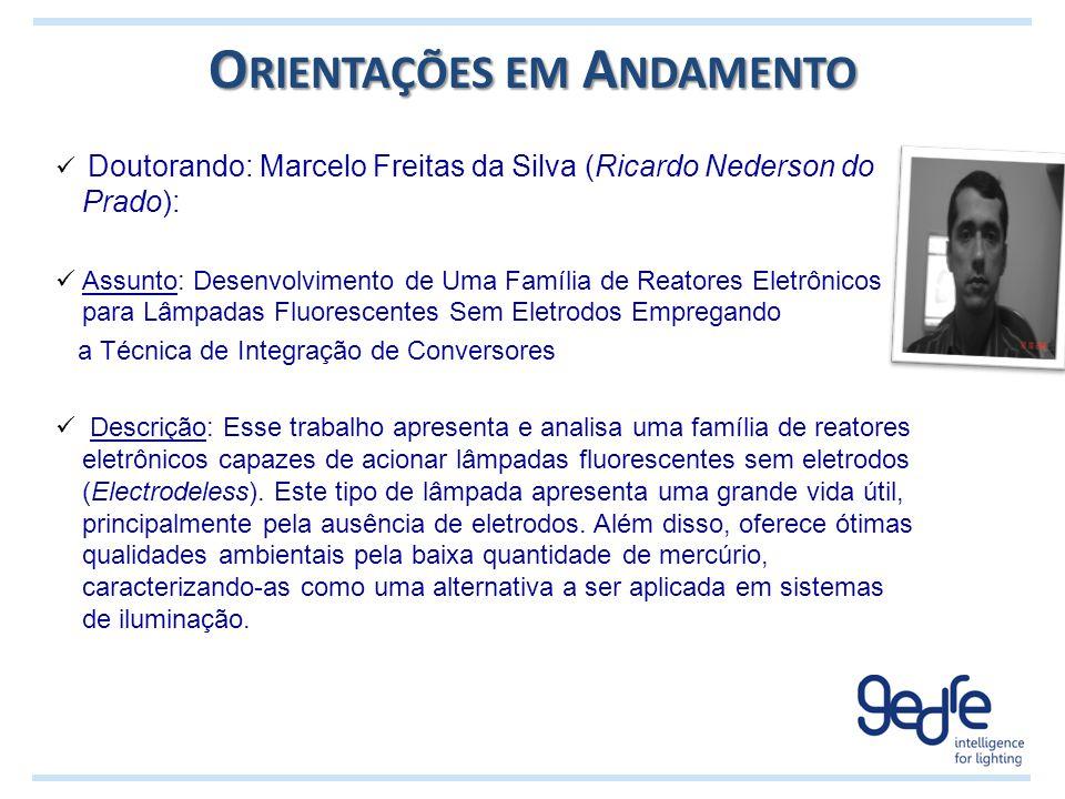 O RIENTAÇÕES EM A NDAMENTO Doutorando: Marcelo Freitas da Silva (Ricardo Nederson do Prado): Assunto: Desenvolvimento de Uma Família de Reatores Eletr