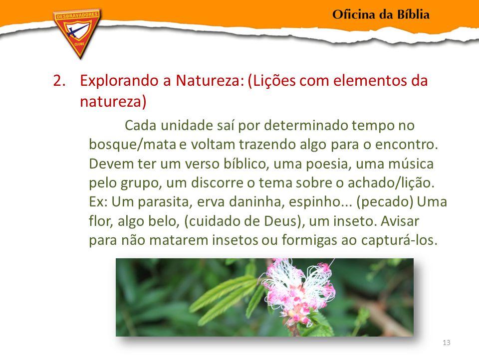 2.Explorando a Natureza: (Lições com elementos da natureza) Cada unidade saí por determinado tempo no bosque/mata e voltam trazendo algo para o encontro.