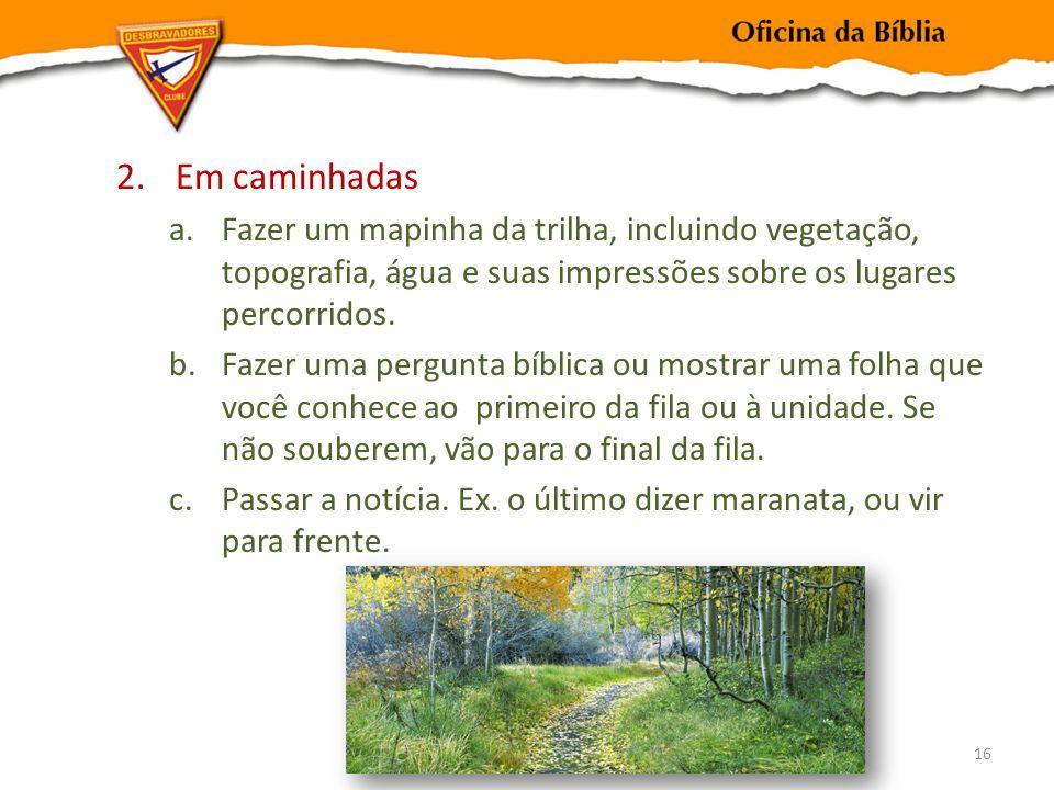 2.Em caminhadas a.Fazer um mapinha da trilha, incluindo vegetação, topografia, água e suas impressões sobre os lugares percorridos.