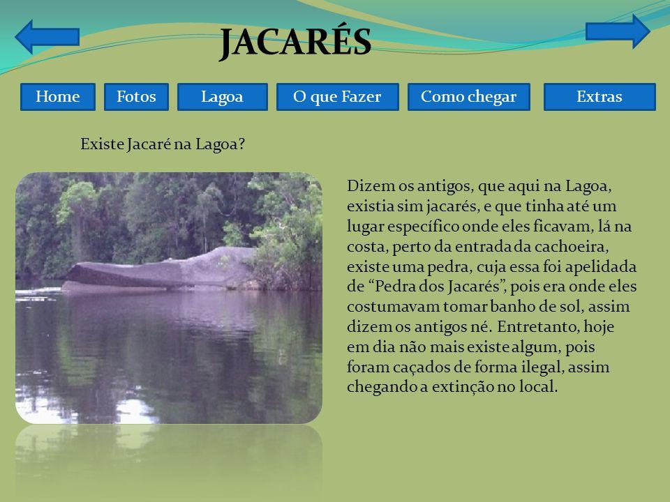 FotosO que FazerComo chegarLagoaHome Existe Jacaré na Lagoa.