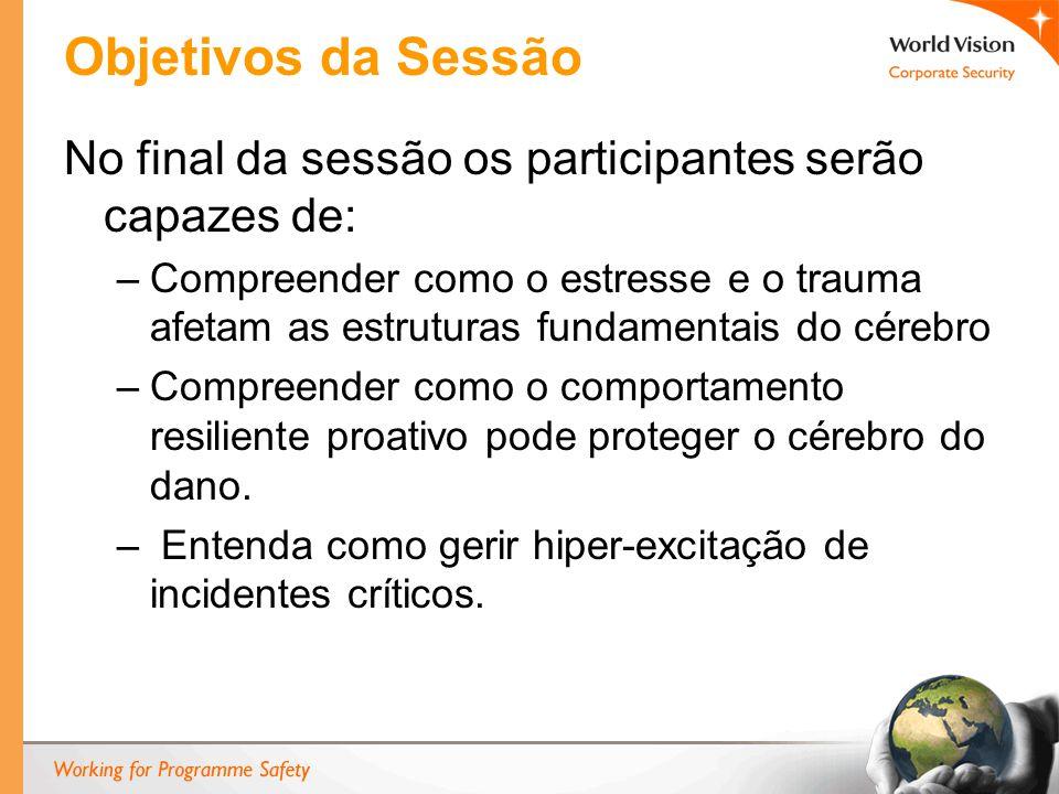 Objetivos da Sessão No final da sessão os participantes serão capazes de: –Compreender como o estresse e o trauma afetam as estruturas fundamentais do