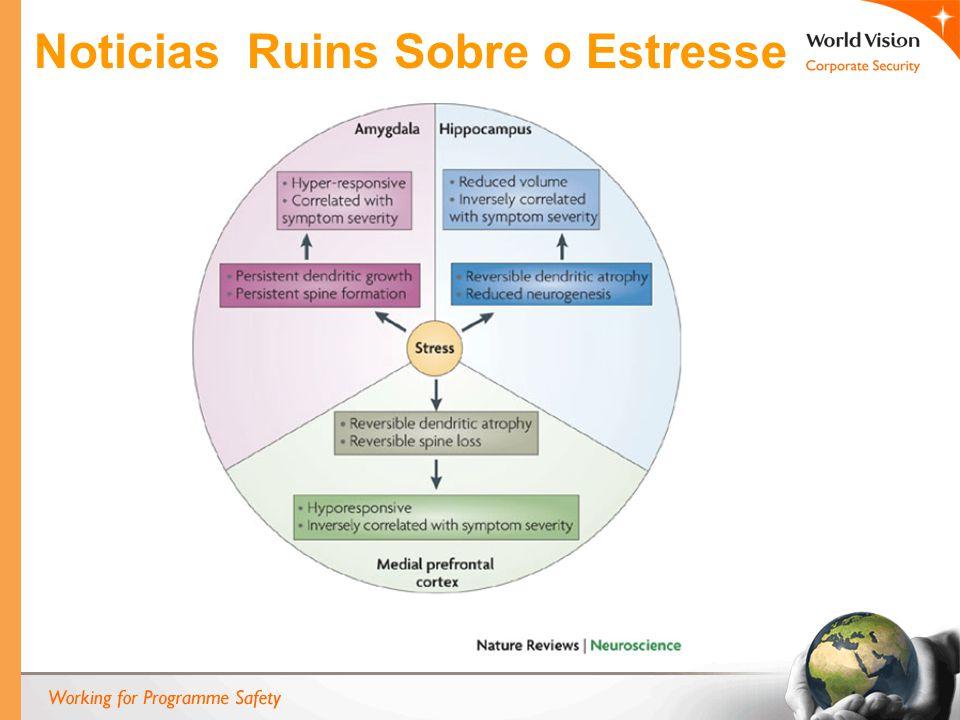 Noticias Ruins Sobre o Estresse