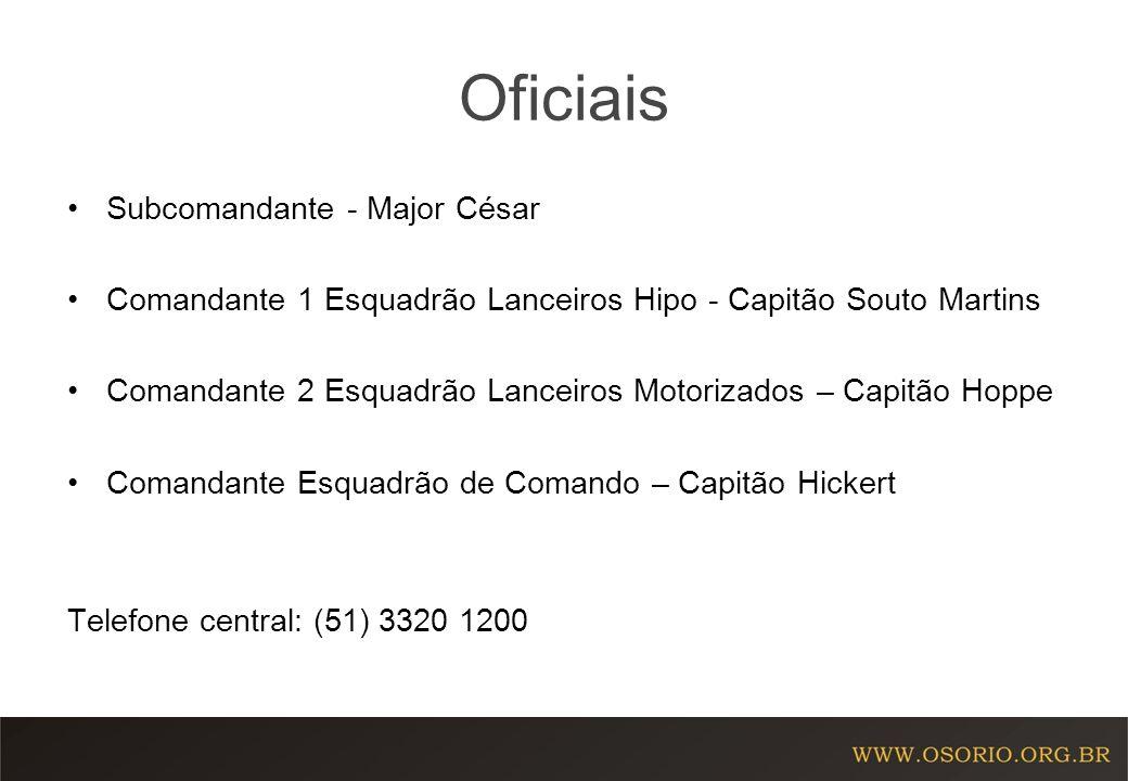 Oficiais Subcomandante - Major César Comandante 1 Esquadrão Lanceiros Hipo - Capitão Souto Martins Comandante 2 Esquadrão Lanceiros Motorizados – Capi