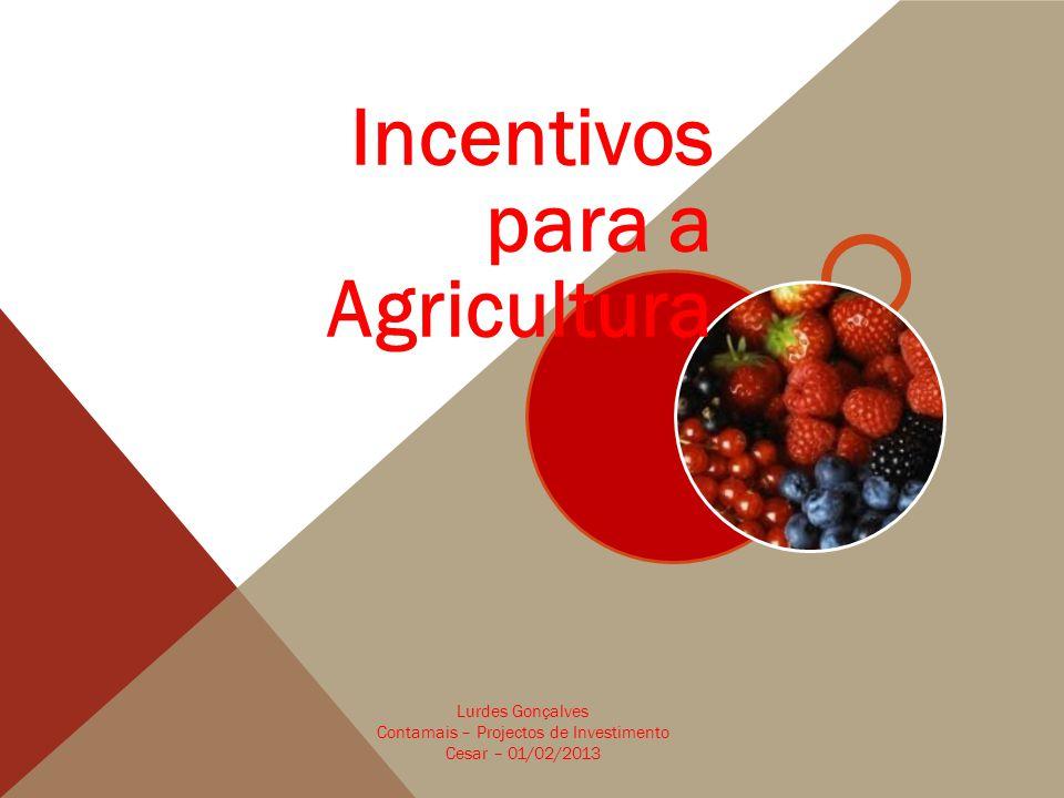 Incentivos para a Agricultura Lurdes Gonçalves Contamais – Projectos de Investimento Cesar – 01/02/2013