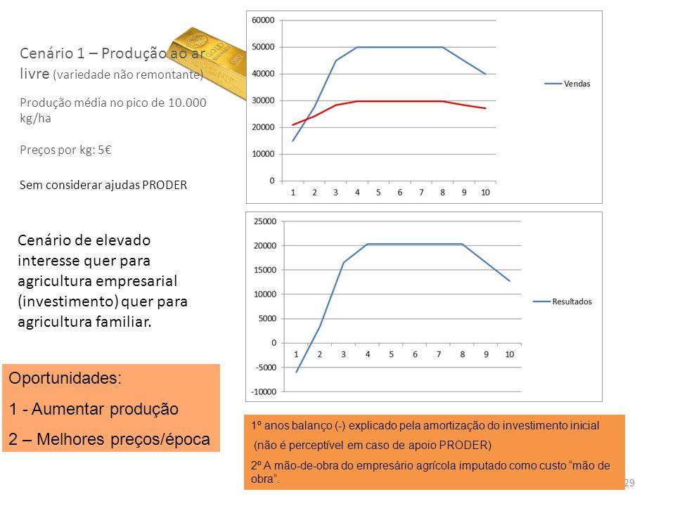 29 Cenário 1 – Produção ao ar livre (variedade não remontante) Produção média no pico de 10.000 kg/ha Preços por kg: 5 Sem considerar ajudas PRODER Ce
