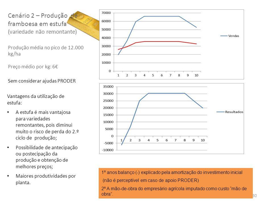 30 Cenário 2 – Produção de framboesa em estufa (variedade não remontante) Produção média no pico de 12.000 kg/ha Preço médio por kg: 6 Sem considerar
