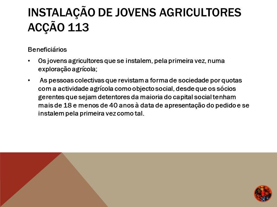 INSTALAÇÃO DE JOVENS AGRICULTORES ACÇÃO 113 Beneficiários Os jovens agricultores que se instalem, pela primeira vez, numa exploração agrícola; As pess