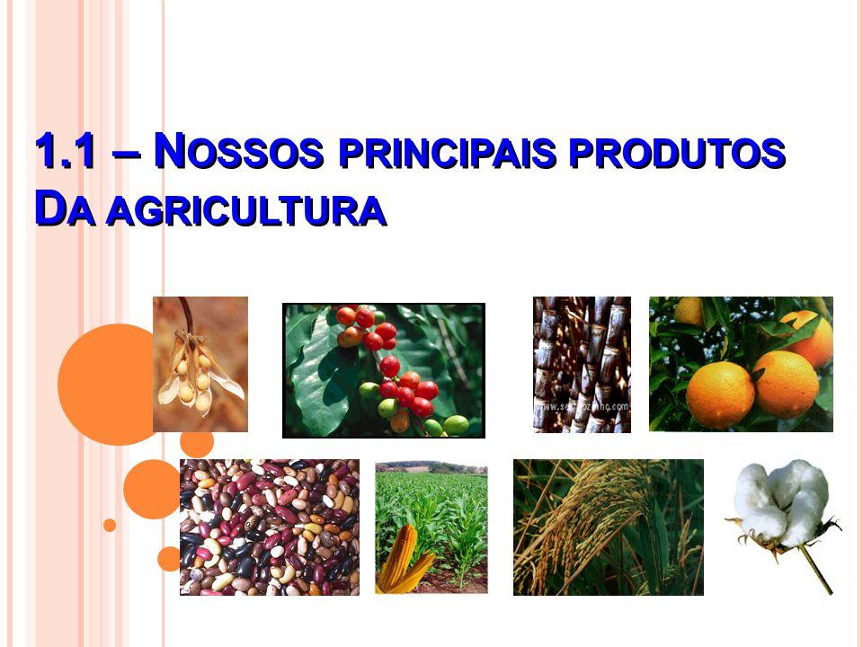 1.1 – N OSSOS PRINCIPAIS PRODUTOS D A AGRICULTURA