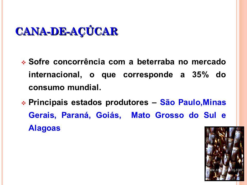 CANA-DE-AÇÚCAR Sofre concorrência com a beterraba no mercado internacional, o que corresponde a 35% do consumo mundial. Principais estados produtores