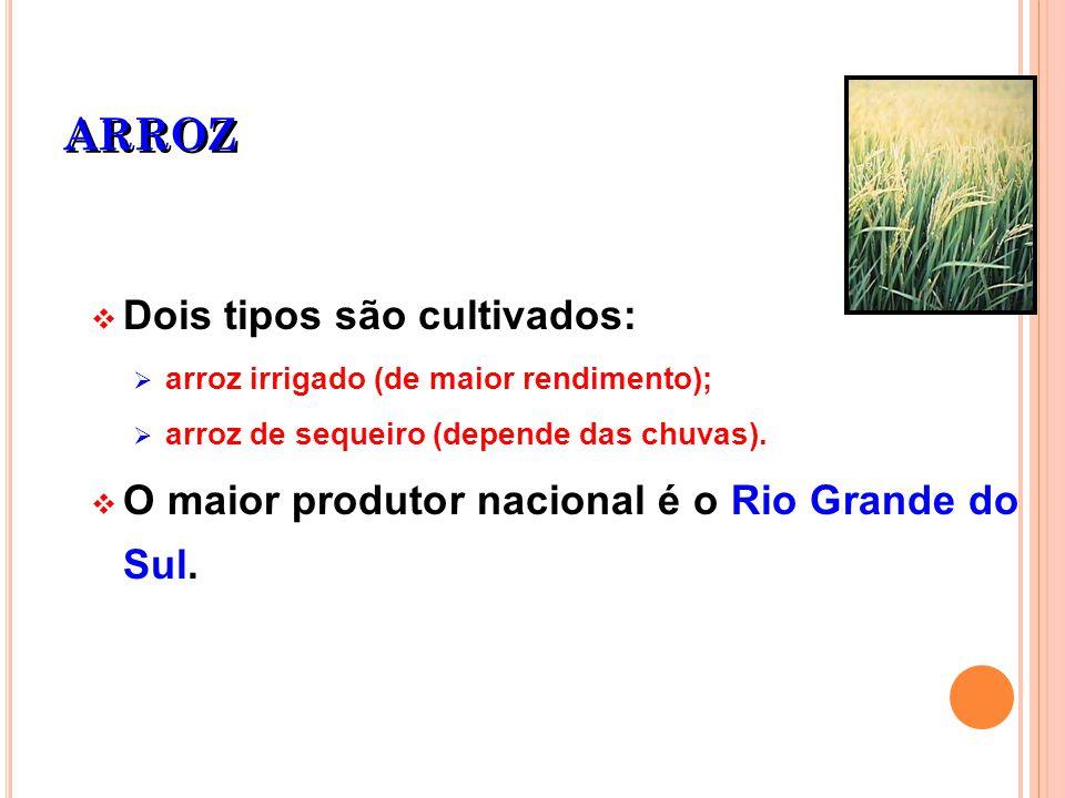 ARROZ Dois tipos são cultivados: arroz irrigado (de maior rendimento); arroz de sequeiro (depende das chuvas). O maior produtor nacional é o Rio Grand