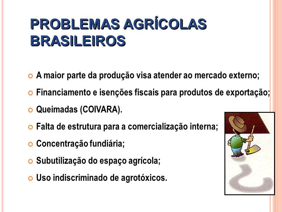 PROBLEMAS AGRÍCOLAS BRASILEIROS A maior parte da produção visa atender ao mercado externo; Financiamento e isenções fiscais para produtos de exportaçã
