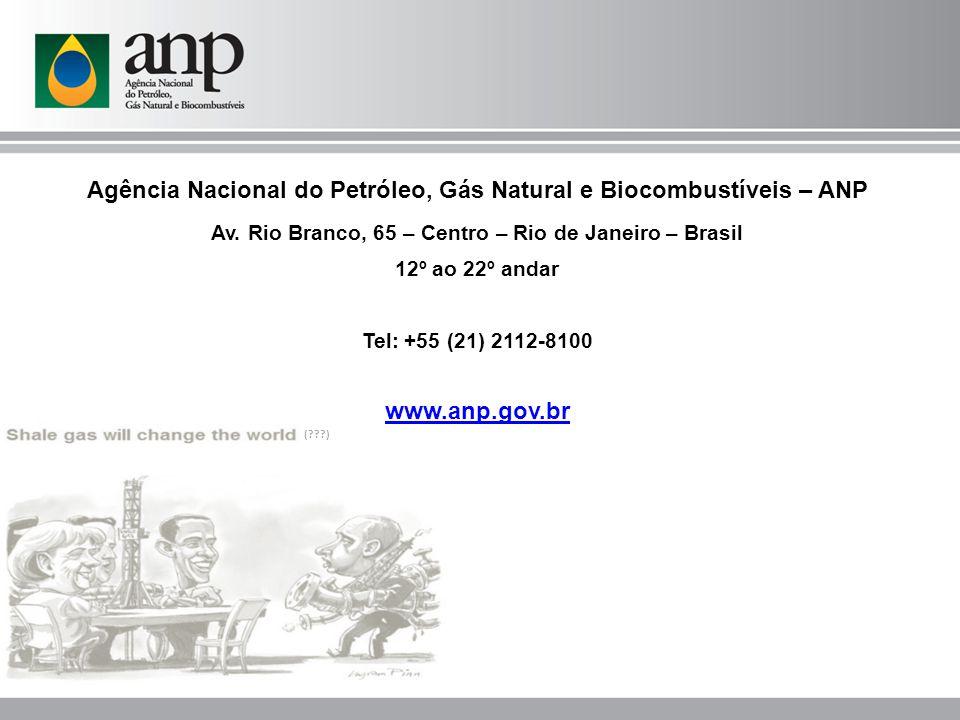(???) Agência Nacional do Petróleo, Gás Natural e Biocombustíveis – ANP Av. Rio Branco, 65 – Centro – Rio de Janeiro – Brasil 12º ao 22º andar Tel: +5