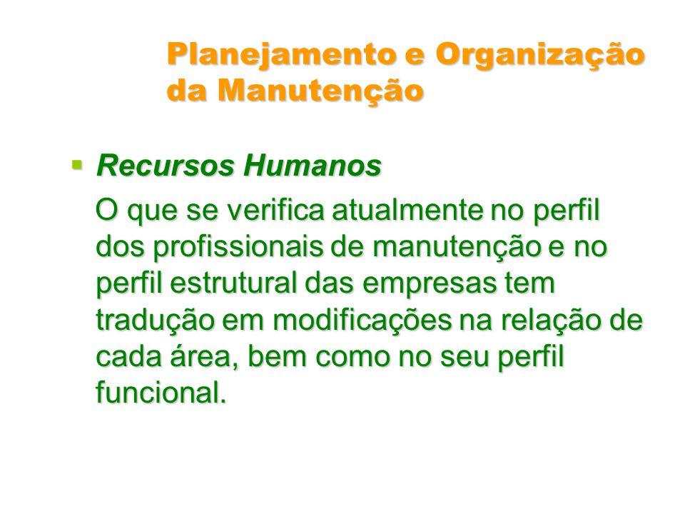 Planejamento e Organização da Manutenção Recursos Humanos Recursos Humanos O que se verifica atualmente no perfil dos profissionais de manutenção e no