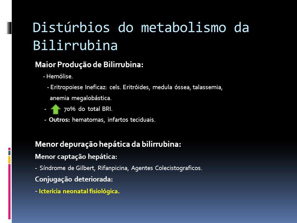 Distúrbios do metabolismo da Bilirrubina Maior Produção de Bilirrubina: - Hemólise. - Eritropoiese Ineficaz: cels. Eritróides, medula óssea, talassemi