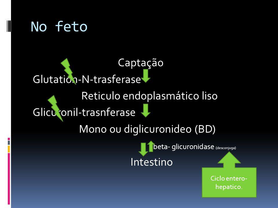 No feto Captação Glutation-N-trasferase Reticulo endoplasmático liso Glicuronil-trasnferase Mono ou diglicuronideo (BD) beta- glicuronidase (desconjug
