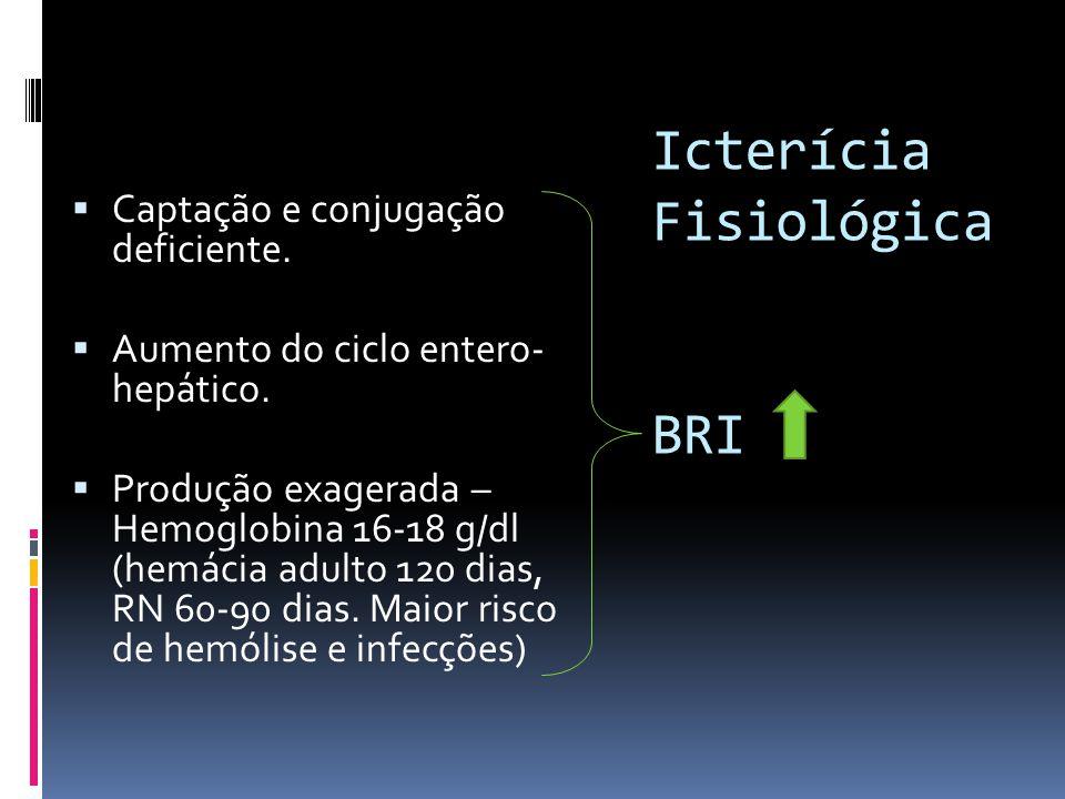 Icterícia Fisiológica BRI Captação e conjugação deficiente. Aumento do ciclo entero- hepático. Produção exagerada – Hemoglobina 16-18 g/dl (hemácia ad