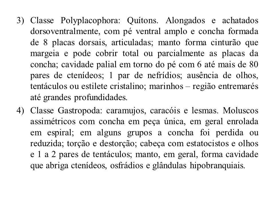 3)Classe Polyplacophora: Quítons. Alongados e achatados dorsoventralmente, com pé ventral amplo e concha formada de 8 placas dorsais, articuladas; man