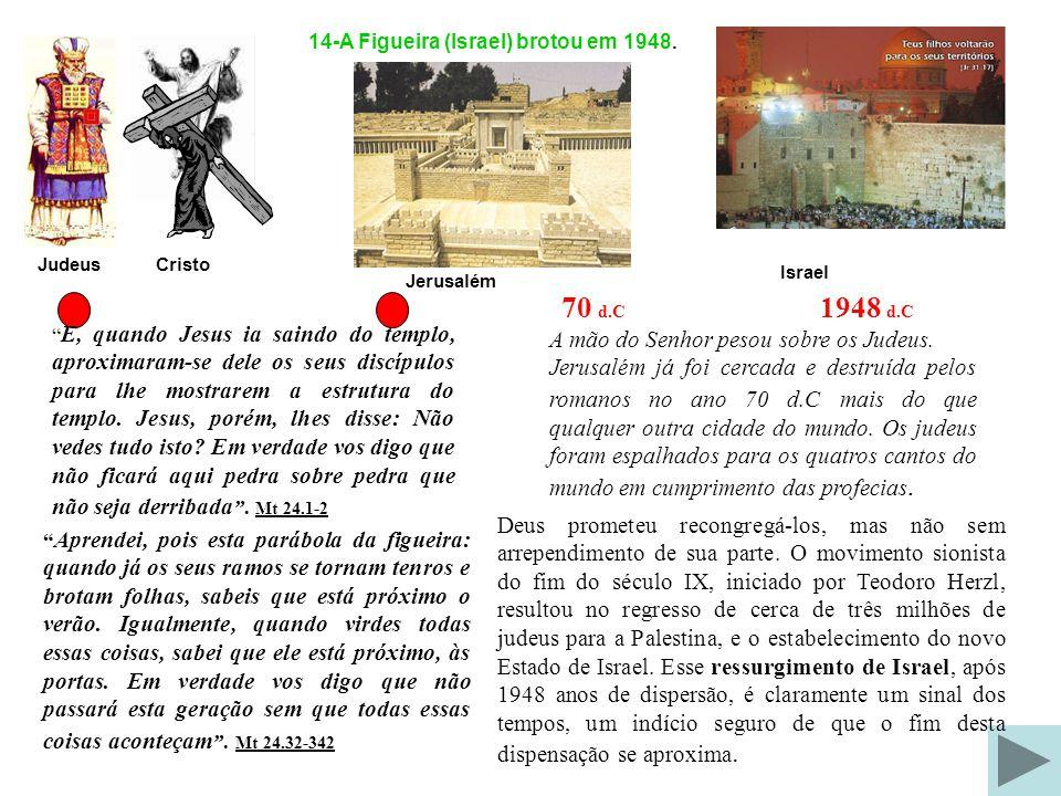 24- O Final do Milênio 22-O Milênio Pés da Estátua destruido por uma pedra representa a purificação do Governo Humano para o Milenio.