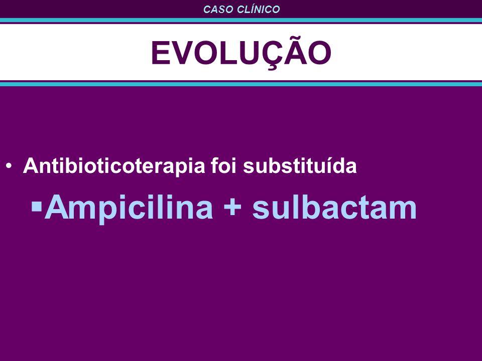 CASO CLÍNICO EVOLUÇÃO Antibioticoterapia foi substituída Ampicilina + sulbactam