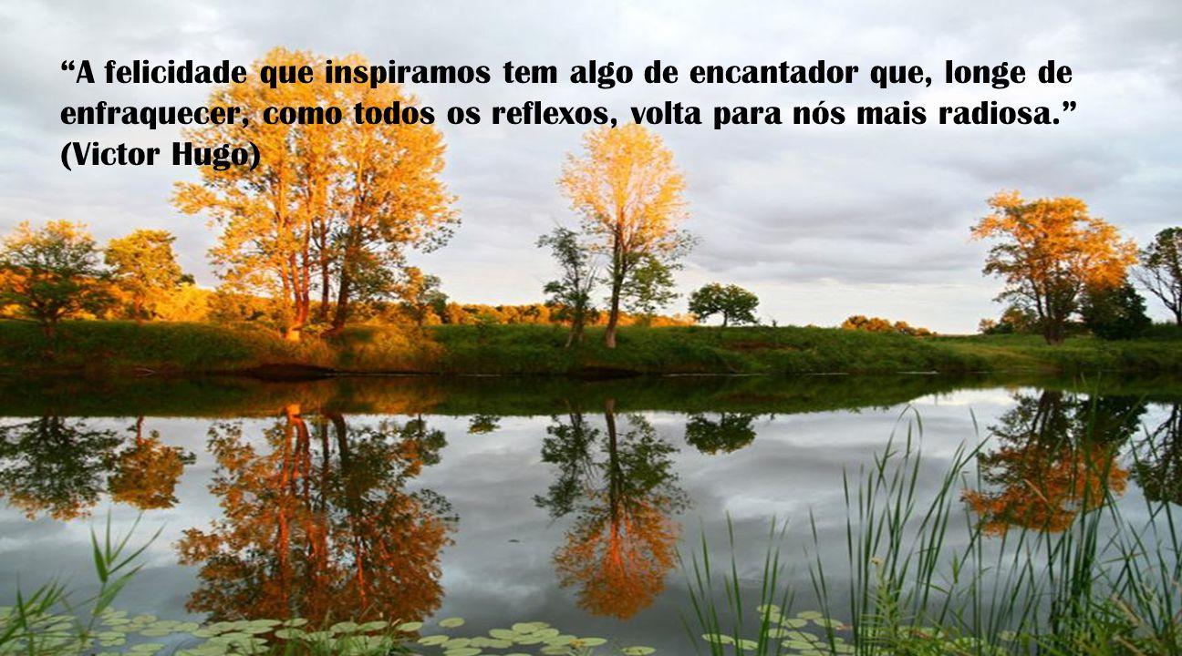 A felicidade que inspiramos tem algo de encantador que, longe de enfraquecer, como todos os reflexos, volta para nós mais radiosa.