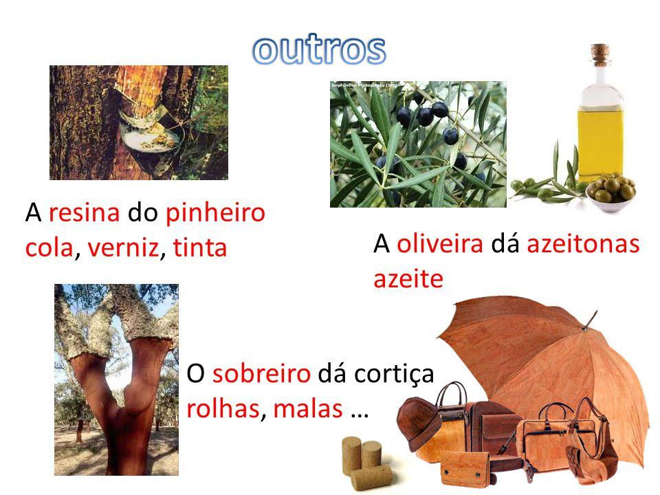 A resina do pinheiro cola, verniz, tinta O sobreiro dá cortiça rolhas, malas … A oliveira dá azeitonas azeite