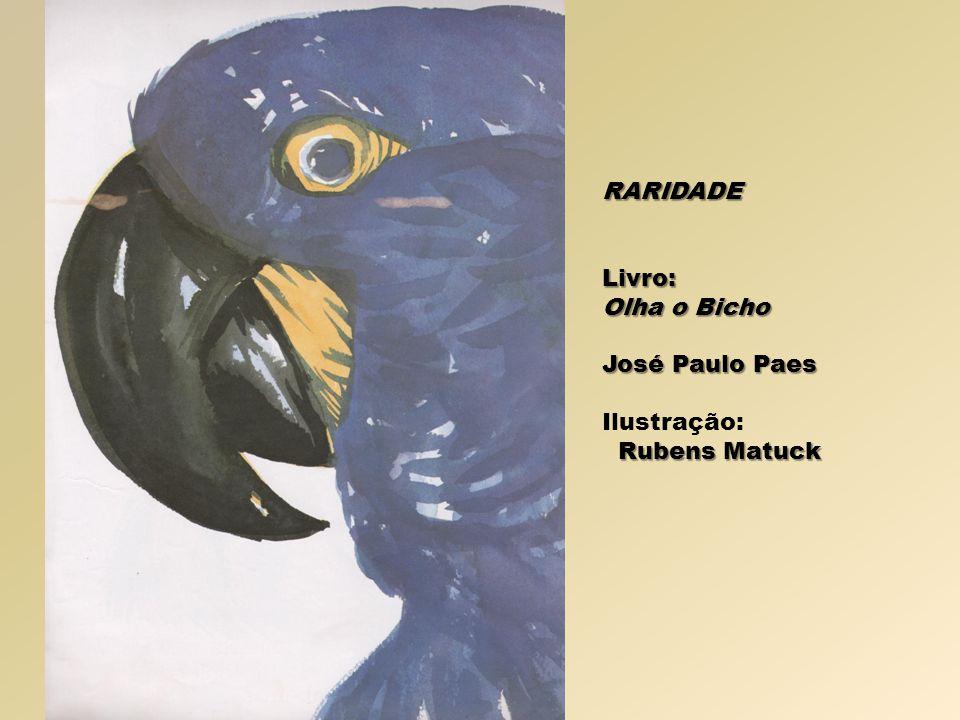 RARIDADELivro: Olha o Bicho José Paulo Paes Ilustração: Rubens Matuck