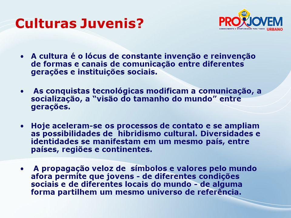 A cultura fruição, criação e produção, dimensão econômica é um elemento estruturante da vivência juvenil, mas tem sido pouco incorporada às preocupações dos gestores públicos (Conjuve, 2006).
