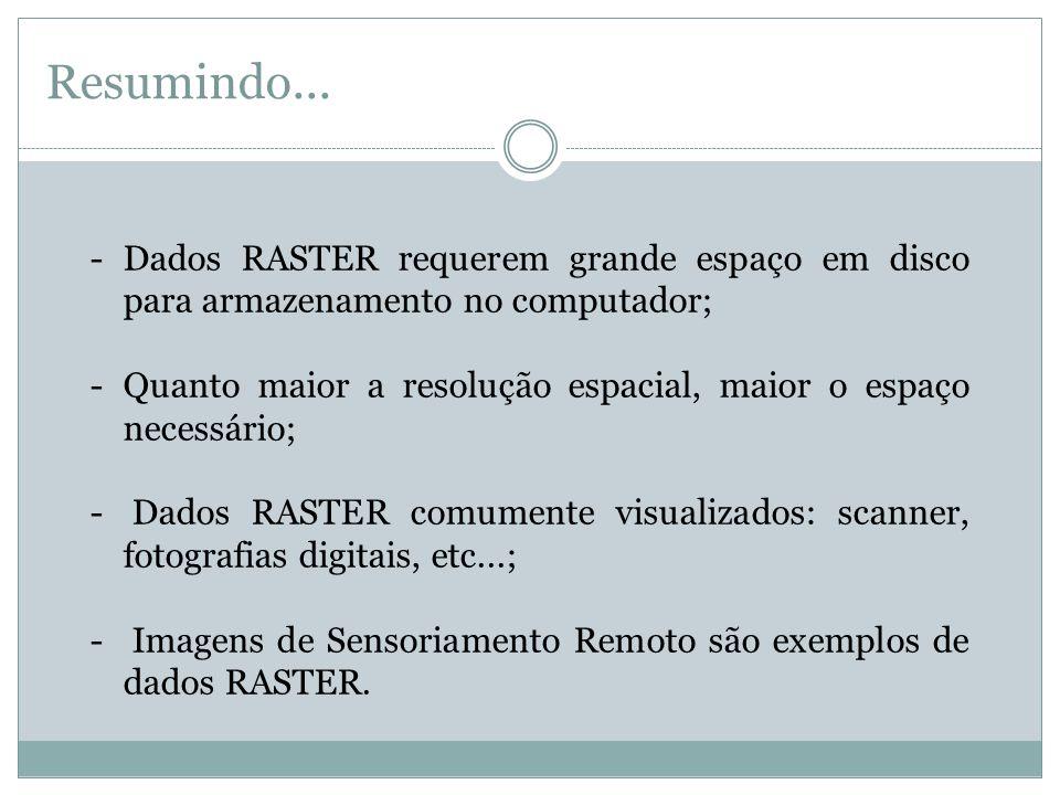 Resumindo... -Dados RASTER requerem grande espaço em disco para armazenamento no computador; -Quanto maior a resolução espacial, maior o espaço necess