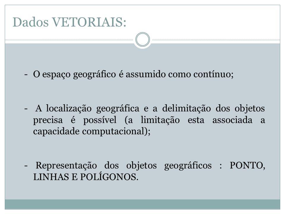 Dados VETORIAIS: -O espaço geográfico é assumido como contínuo; - A localização geográfica e a delimitação dos objetos precisa é possível (a limitação