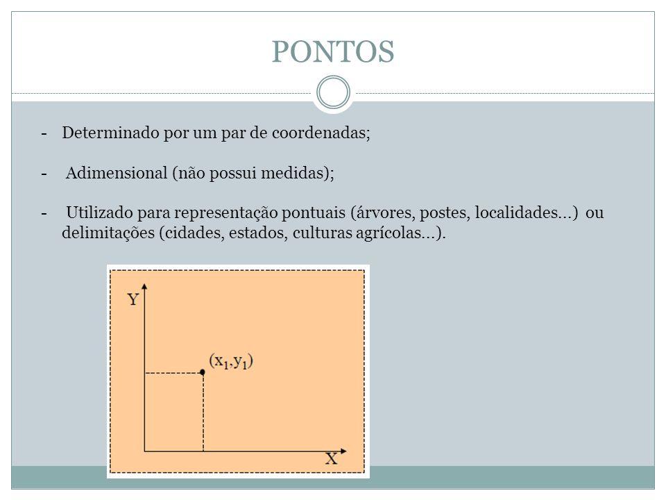 PONTOS -Determinado por um par de coordenadas; - Adimensional (não possui medidas); - Utilizado para representação pontuais (árvores, postes, localida