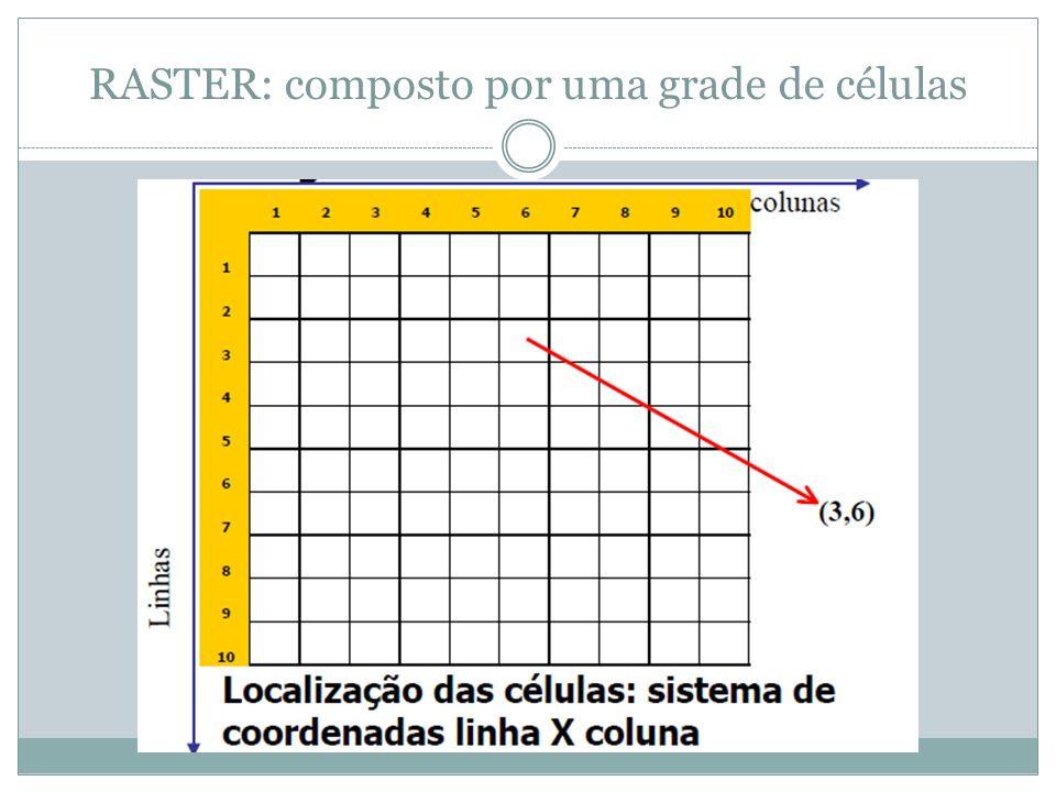 Representação dos pontos no modelo RASTER: células Que em uma imagem pode ser representado pelos pixels Representação de áreas no modelo RASTER