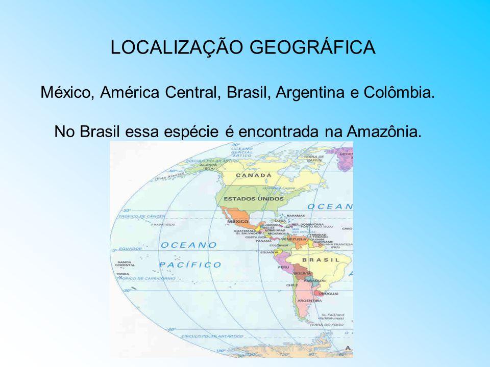 LOCALIZAÇÃO GEOGRÁFICA México, América Central, Brasil, Argentina e Colômbia. No Brasil essa espécie é encontrada na Amazônia.