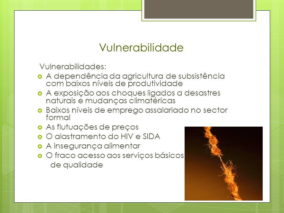 Vulnerabilidade Vulnerabilidades: A dependência da agricultura de subsistência com baixos níveis de produtividade A exposição aos choques ligados a desastres naturais e mudanças climatéricas Baixos níveis de emprego assalariado no sector formal As flutuações de preços O alastramento do HIV e SIDA A insegurança alimentar O fraco acesso aos serviços básicos de qualidade