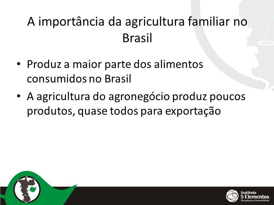 A importância da agricultura familiar no Brasil Produz a maior parte dos alimentos consumidos no Brasil A agricultura do agronegócio produz poucos pro