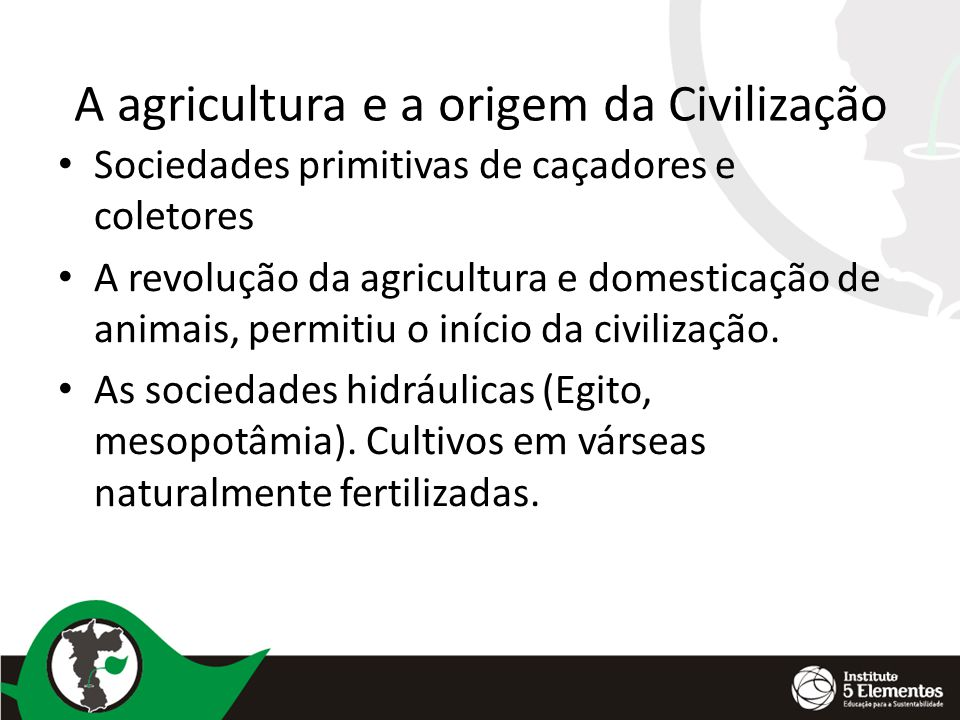 A agricultura e a origem da Civilização Sociedades primitivas de caçadores e coletores A revolução da agricultura e domesticação de animais, permitiu