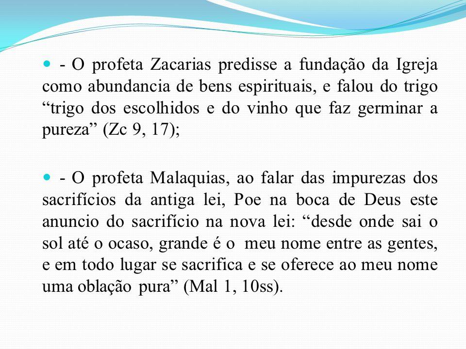 - O profeta Zacarias predisse a fundação da Igreja como abundancia de bens espirituais, e falou do trigo trigo dos escolhidos e do vinho que faz germi