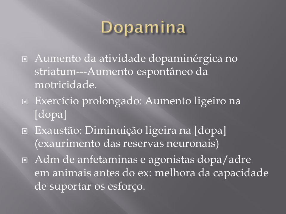 Aumento da atividade dopaminérgica no striatum---Aumento espontâneo da motricidade. Exercício prolongado: Aumento ligeiro na [dopa] Exaustão: Diminuiç