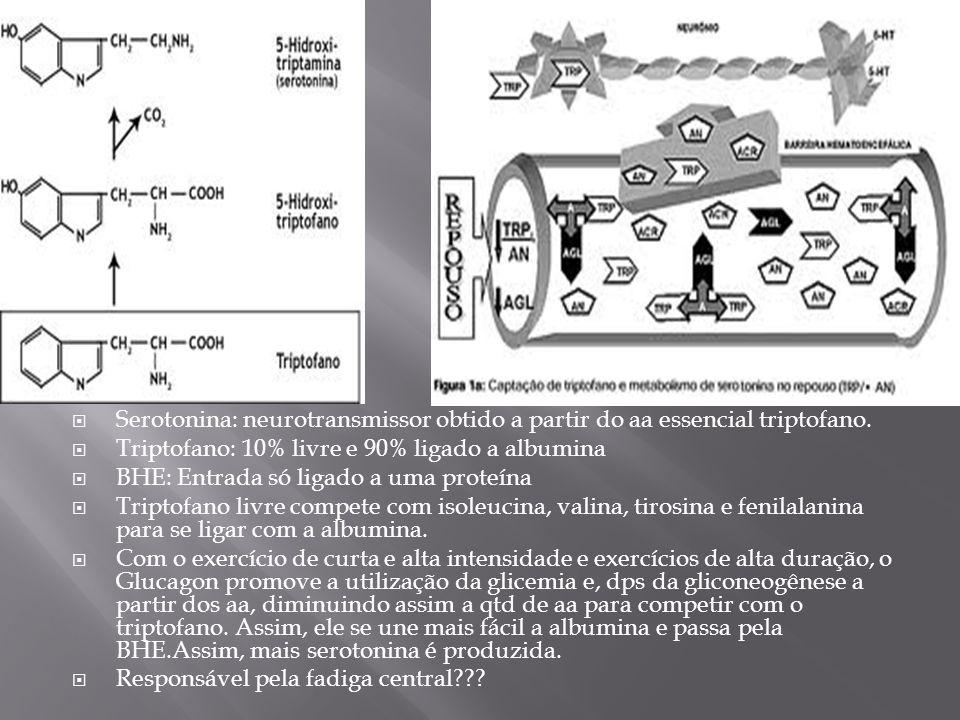 Serotonina: neurotransmissor obtido a partir do aa essencial triptofano. Triptofano: 10% livre e 90% ligado a albumina BHE: Entrada só ligado a uma pr