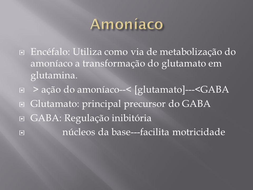 Encéfalo: Utiliza como via de metabolização do amoníaco a transformação do glutamato em glutamina. > ação do amoníaco--< [glutamato]---<GABA Glutamato