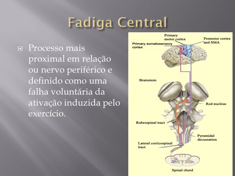 Processo mais proximal em relação ou nervo periférico e definido como uma falha voluntária da ativação induzida pelo exercício.