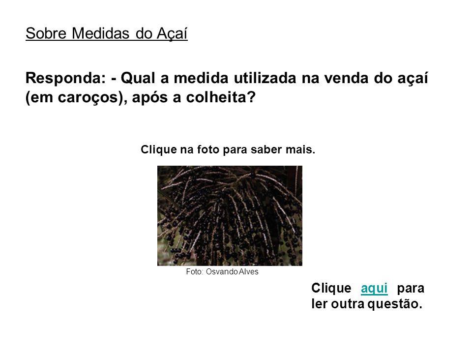 Sobre Medidas do Açaí Responda: - Qual a medida utilizada na venda do açaí (em caroços), após a colheita? Clique na foto para saber mais. Clique aqui