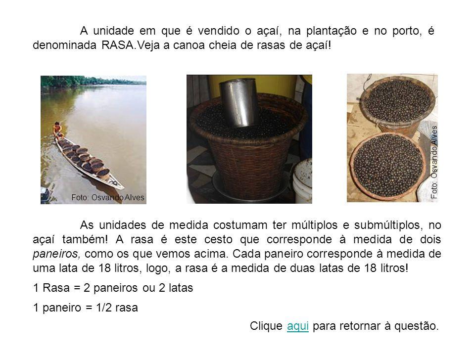 A unidade em que é vendido o açaí, na plantação e no porto, é denominada RASA.Veja a canoa cheia de rasas de açaí.