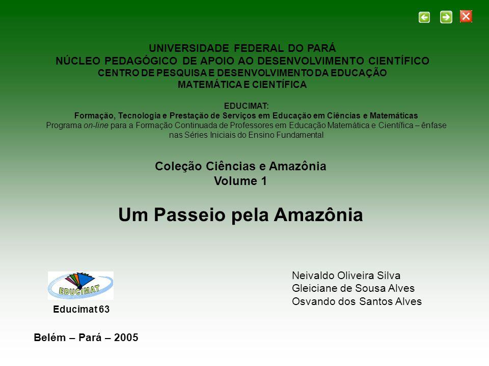 UNIVERSIDADE FEDERAL DO PARÁ NÚCLEO PEDAGÓGICO DE APOIO AO DESENVOLVIMENTO CIENTÍFICO CENTRO DE PESQUISA E DESENVOLVIMENTO DA EDUCAÇÃO MATEMÁTICA E CI