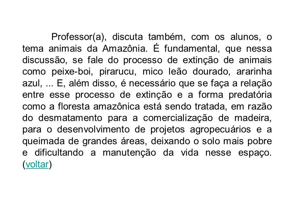 Professor(a), discuta também, com os alunos, o tema animais da Amazônia. É fundamental, que nessa discussão, se fale do processo de extinção de animai