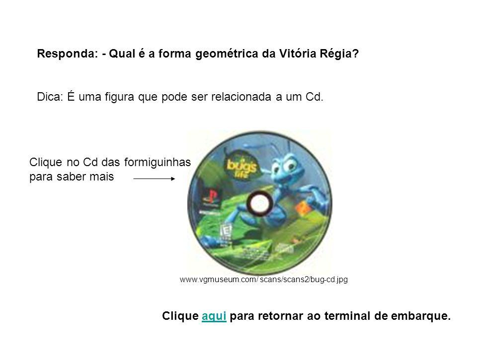 Responda: - Qual é a forma geométrica da Vitória Régia? Dica: É uma figura que pode ser relacionada a um Cd. www.vgmuseum.com/ scans/scans2/bug-cd.jpg